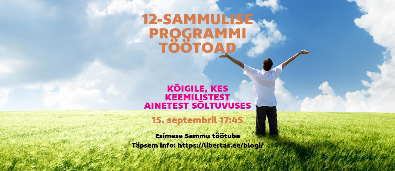 12-sammu programmi töötoad